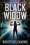 Gia and the Black Widow (A Gia Santella Crime Thriller)