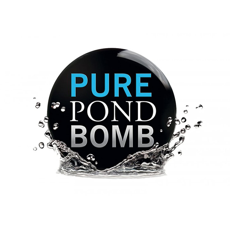 Evolution Aqua Pure Pond Bomb Ø ca. 6cm - for 20000 Liter SunSun