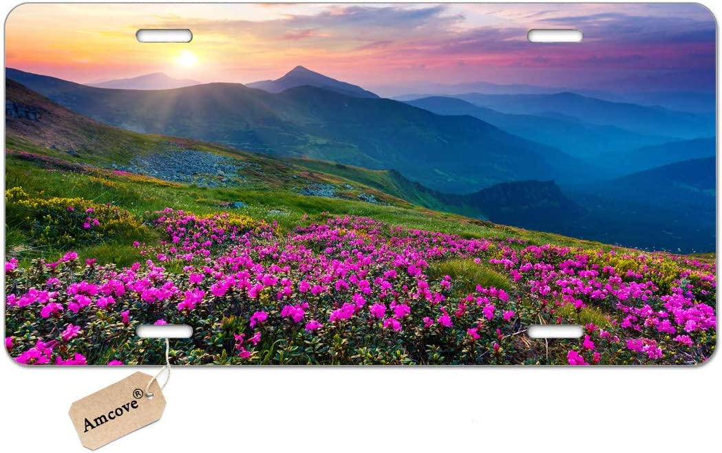 "Amcove Nature Pink Rhododendron Flowers on Mountain Scenic Automotive high Gloss Metal License Plate, Aluminum License Plate, Front License Plate - 6"" x 12"" inch"