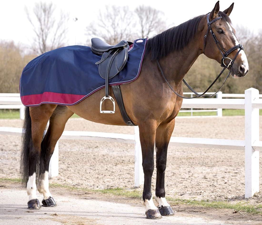 Tyrex 1200, relleno de 50 g, impermeable, transpirable, correas cruzadas, 135 cm Reitsport Amesbichler Manta para caballo