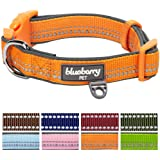 Blueberry Pet 3M Reflective Adjustable Classic Solid Color Dog Collar, 8 Colors, Matching Leash Available Separately
