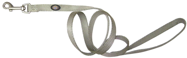 (1.6cm x 1.2m, Sage) Hamilton 1.6cm Single Thick Nylon Lead with Swivel Snap Brushed Hardware