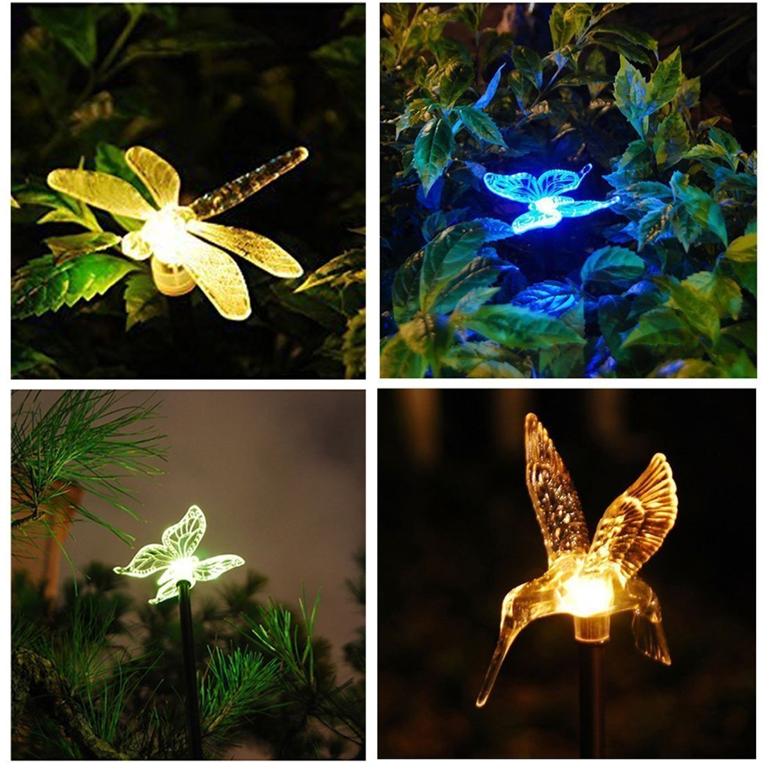 Select A Solar Light Hue That Would Make You Happy And Comfortable