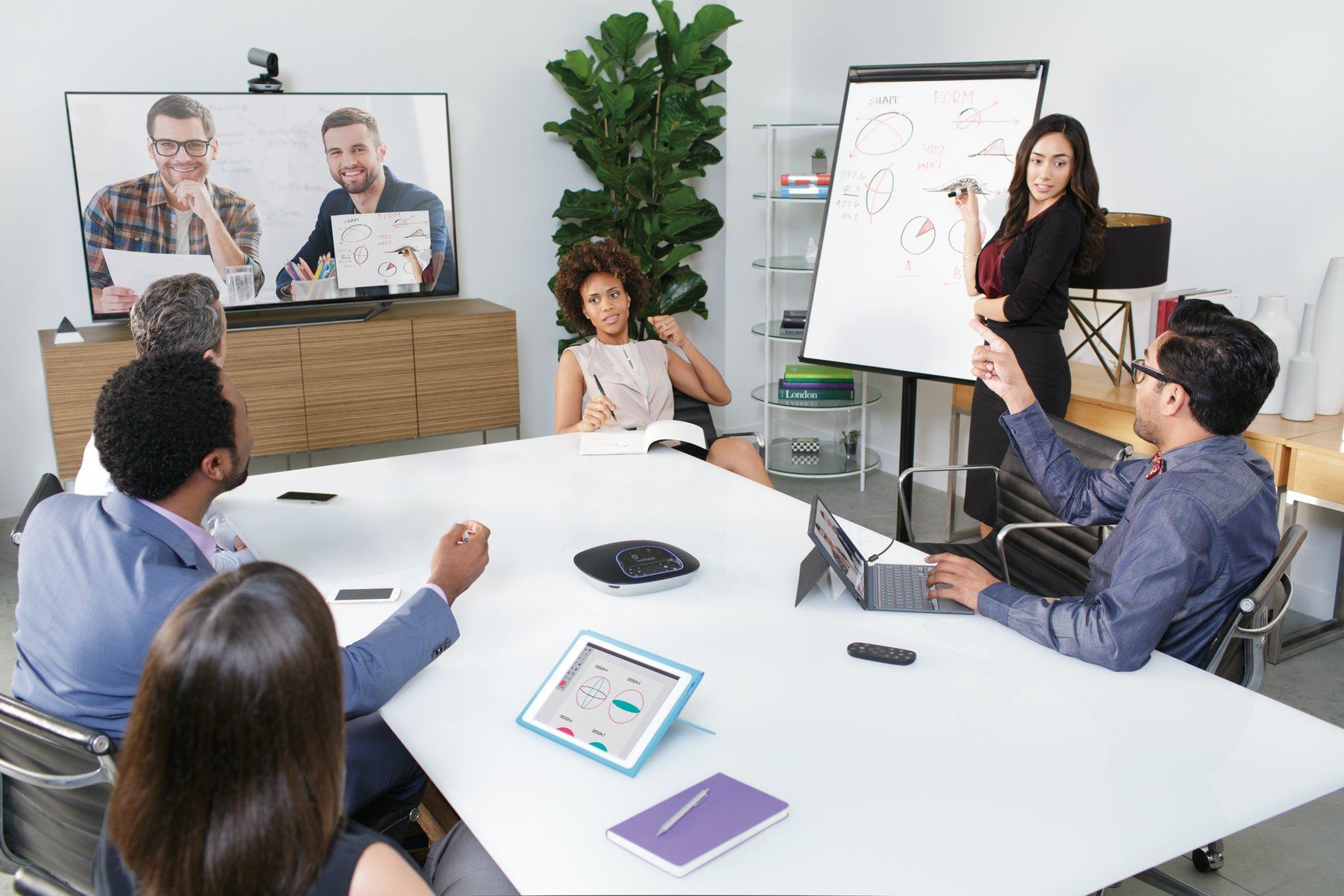 Logitech Group HD Video and Audio Conferencing System for Big Meeting Rooms by Logitech (Image #8)