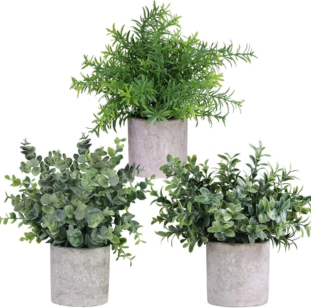 Mini Potted Plants Artificial Eucalyptus Boxwood Rosemary Greenery In Pots Faux Potted Herbs Small Houseplants 8 3 9 Tall For Indoor Greenery Tabletop Décor Centerpiece 3 Pack