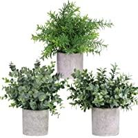Winlyn Mini Potted Plants Artificial Eucalyptus Boxwood Rosemary Greenery in Pots Faux Potted Herbs Small Houseplants 8.3