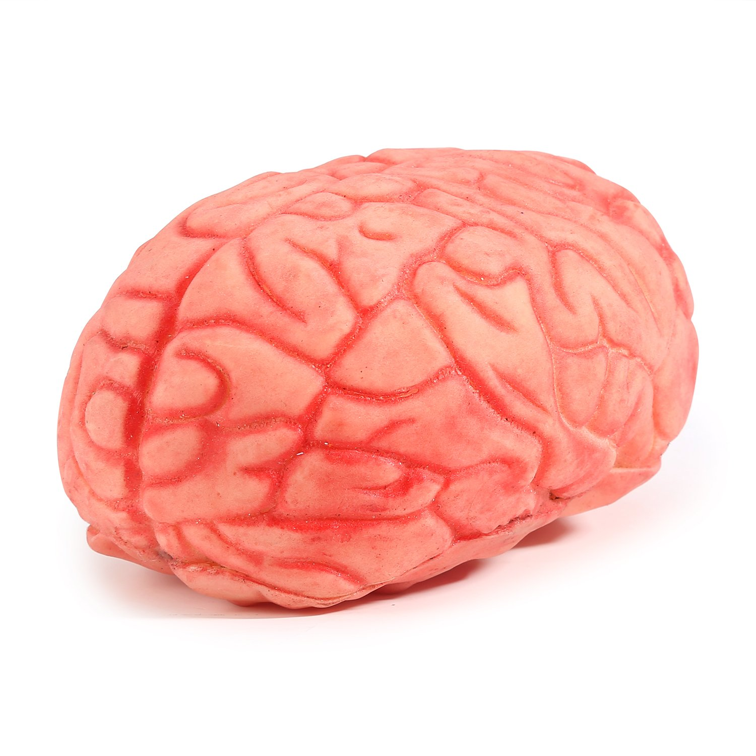 ONEDONE Soft Bloody Brain Mold Horror Halloween Prop by ONEDONE