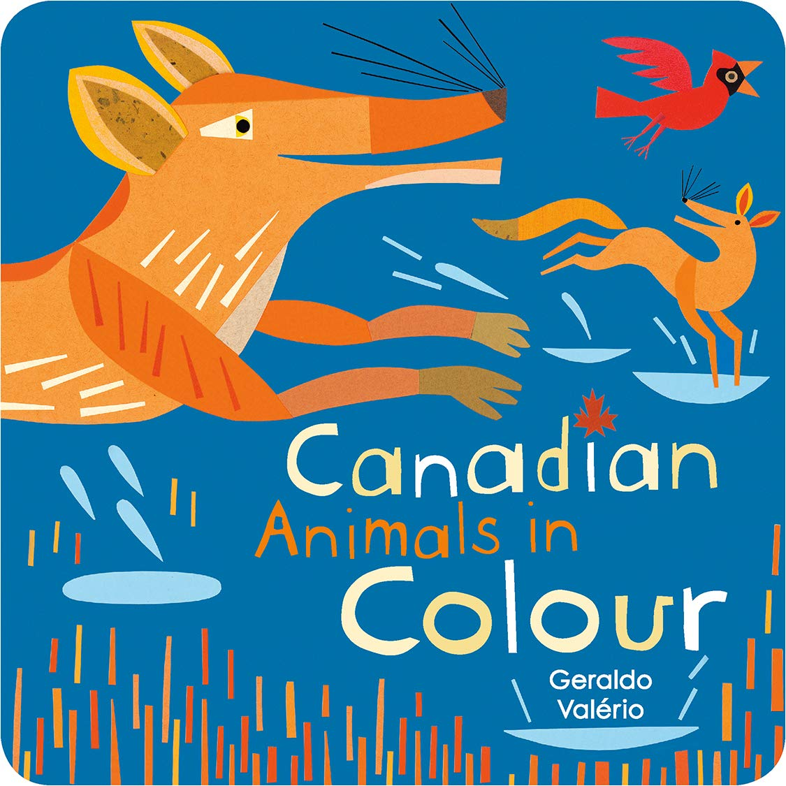 Canadian Animals in Colour (Canadian Concepts)