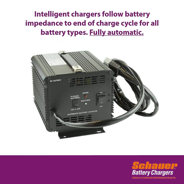 Amazon.com: Carrito de golf Cargador de batería de 36 ...