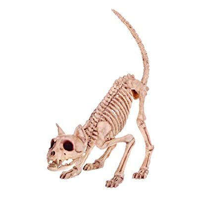 Crazy Bonez Skeleton Cat - Lil' Kitty Bonez: Toys & Games