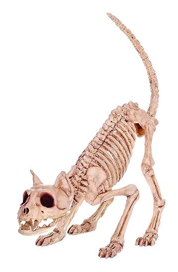 Crazy Bonez Skelett einer Katze – Lil \'Kitty Bonez: Amazon.de: Spielzeug