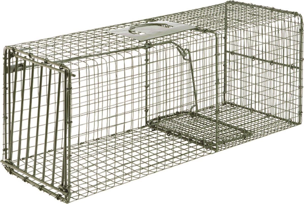Amazon Duke Traps Heavy Duty Cage Trap Sports & Outdoors