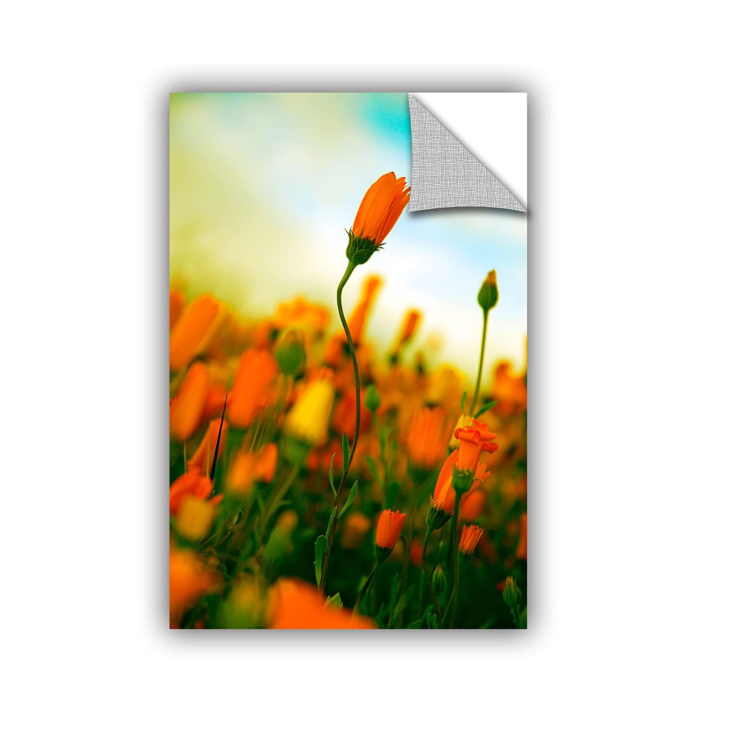 24 x 36 ArtWall Elana Rays African Daisy Appealz Removable Graphic Wall Art Multicolor