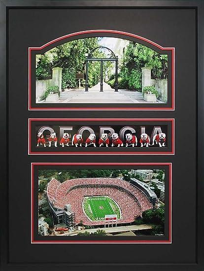 Amazon.com: Athens Art and Frame Danny White Sanford Stadium with ...