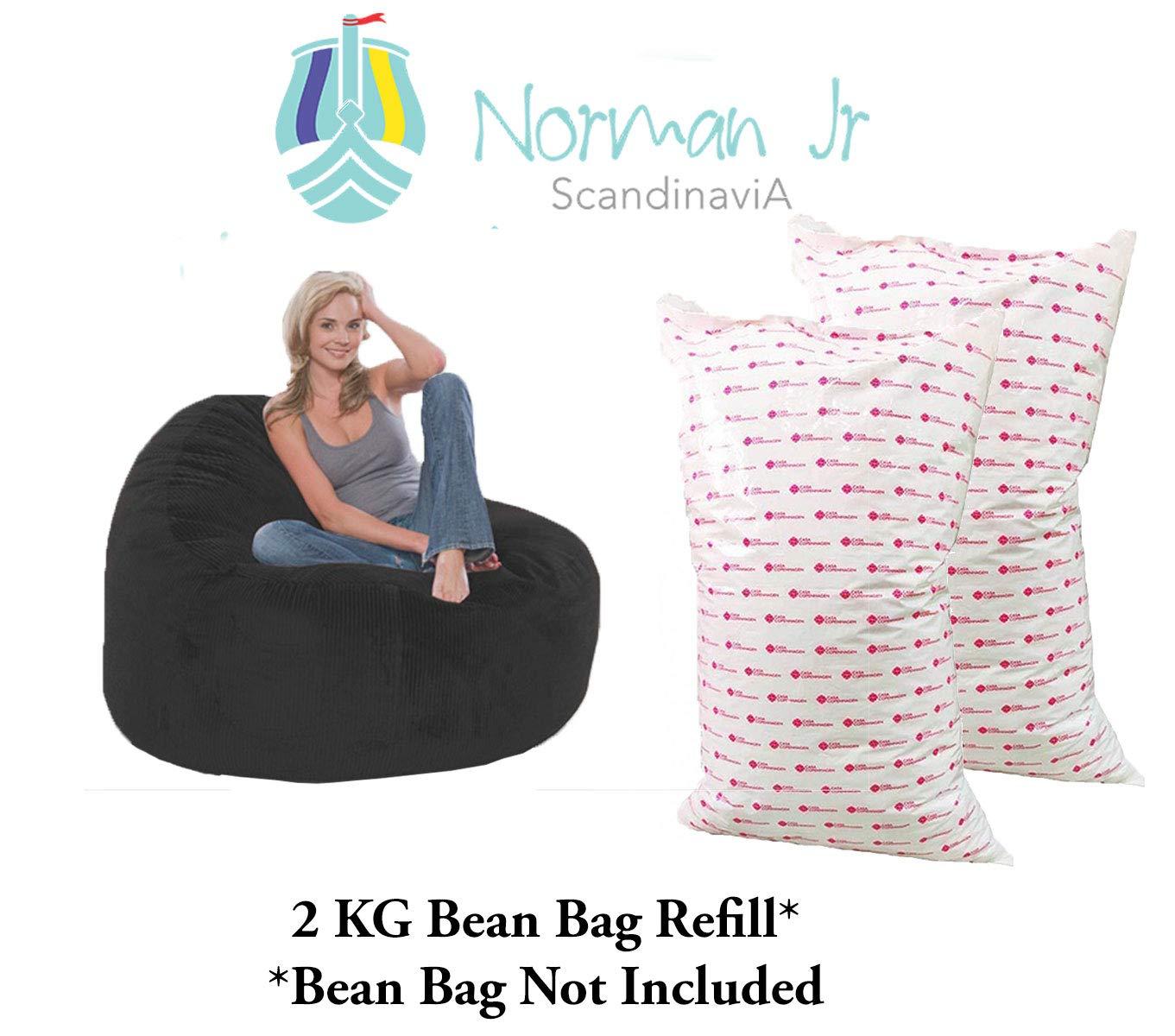 Magnificent Norman Jr Bean Bag Refill Filler 2 Kg White Unemploymentrelief Wooden Chair Designs For Living Room Unemploymentrelieforg