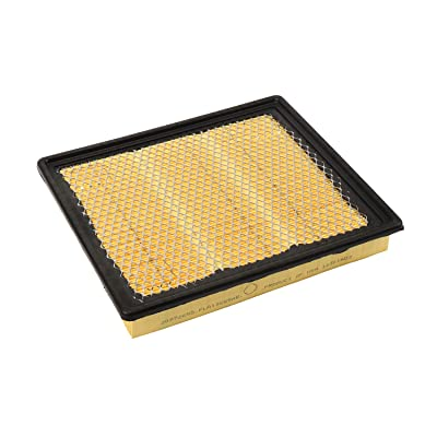 ACDelco A3175C Professional Air Filter: Automotive