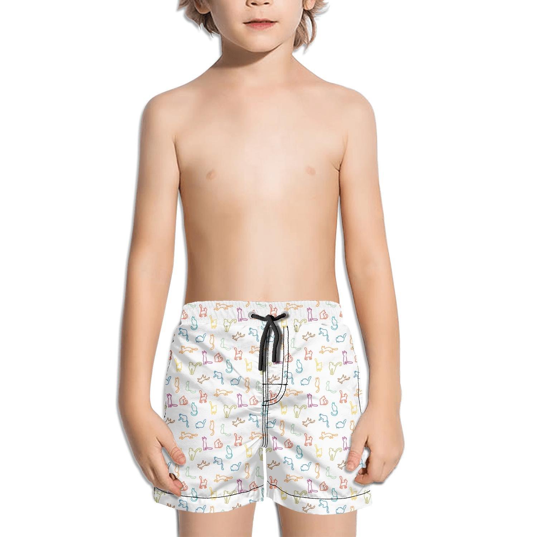 Websi Wihey Boy's Quick Dry Swim Trunks Colourful Cats Linellae White Background Fashione Shorts