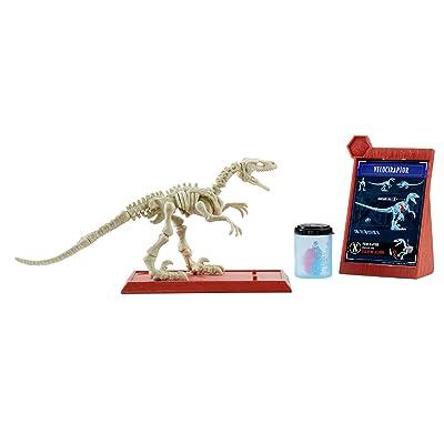 Jurassic World Stem Fossil Strikers Velociraptor: Toys & Games