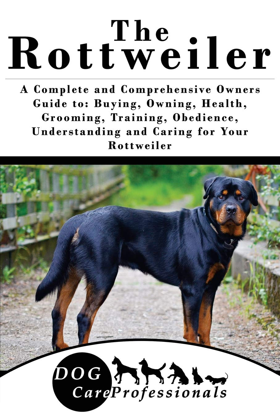 Strengthen your bond with your canine companion
