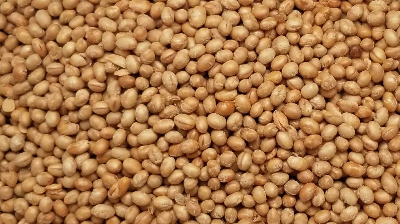Soybeans/Nuts, Roasted & Salted By Presto Sales LLC