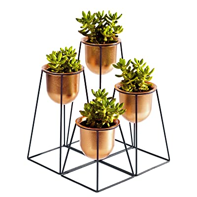 Sunlit Set of 4 Geometric Mini Iron Tabletop Plant Stands with Golden Bronze Plastic Pots Dia 4.1in for Succulent Cactus, Modern Decorative 4 Tiered Black Metal Planter Holder, for Desktop and Garden : Garden & Outdoor