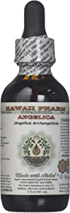 Angelica Alcohol-Free Liquid Extract, Organic Angelica (Angelica archangelica) Dried Root Glycerite 2 oz