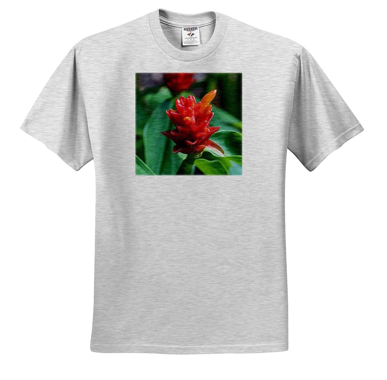 ts/_314798 Flowers - Adult T-Shirt XL Bromeliad Flower Hawaii Honolulu Oahu 3dRose Danita Delimont
