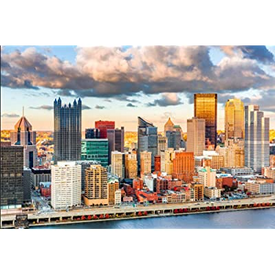 HCYEFG 1000Piece Jigsaw Puzzle Downtown Pittsburgh Hobby Home Decoration DIY: Home & Kitchen