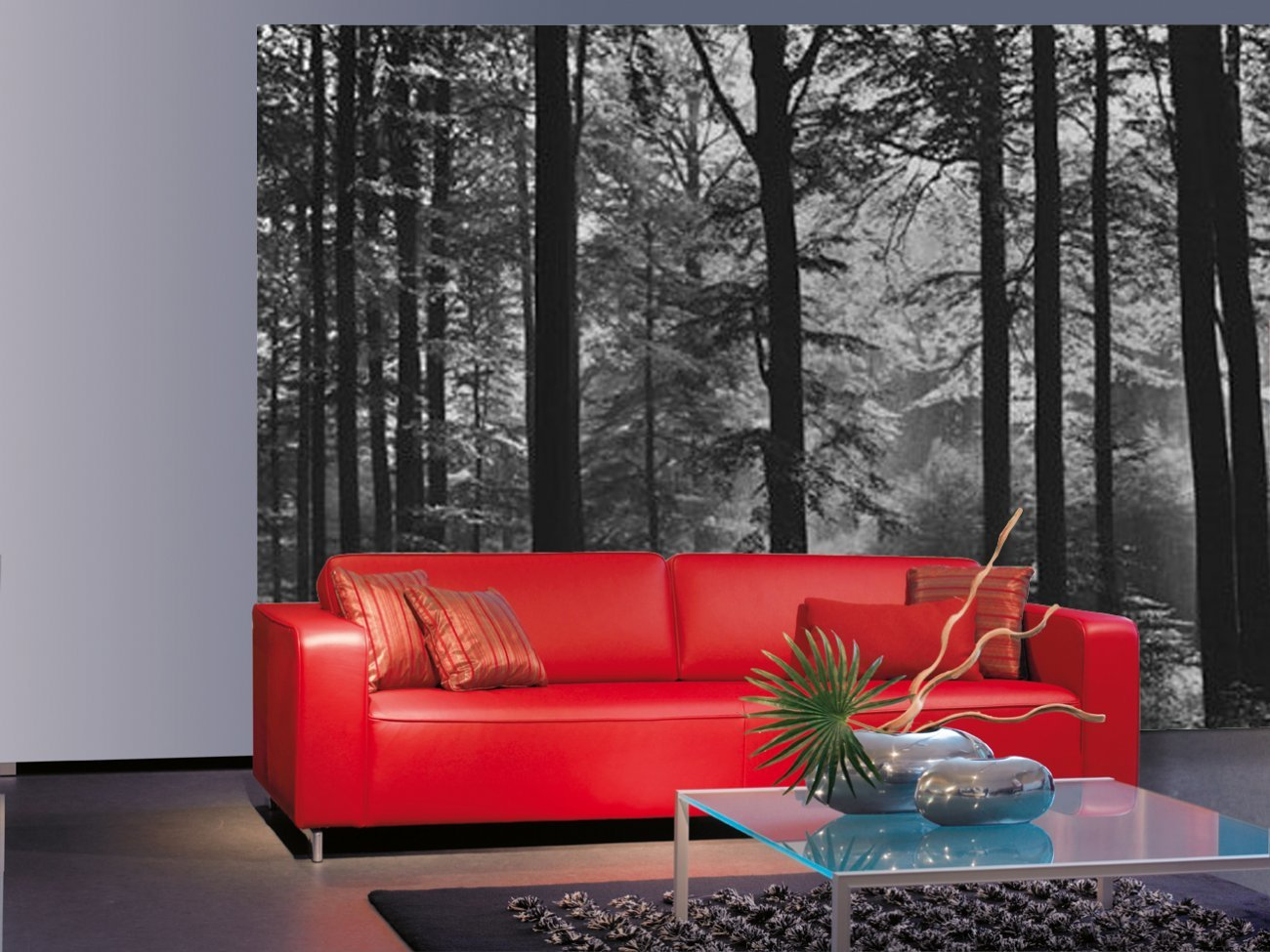 mystical woodland black and white photography nature 8 sheet mystical woodland black and white photography nature 8 sheet forest wall mural 366x254cm available for uk delivery only amazon co uk kitchen home
