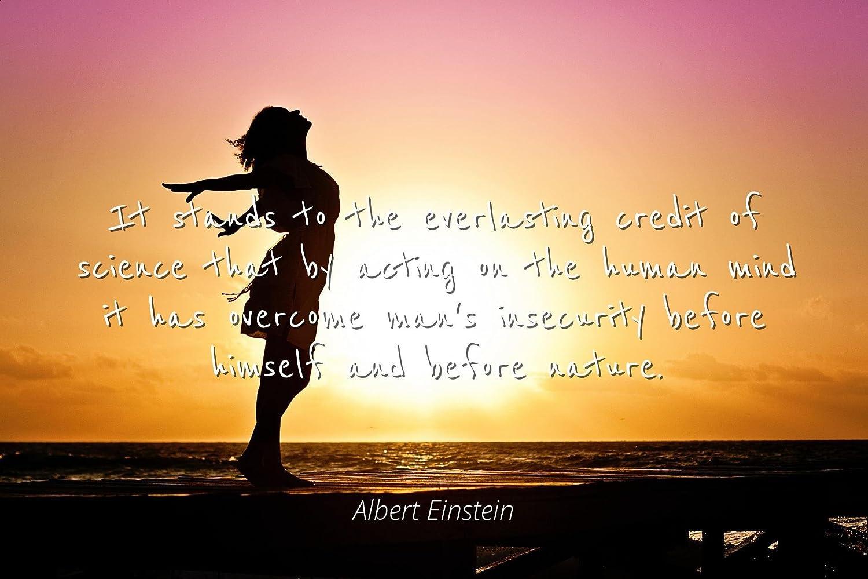 Amazon Albert Einstein Famous Quotes Laminated Poster Print