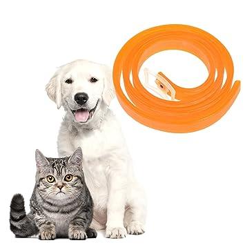 TankerStreet Collares Antipulgas para Perros Gatos Collar de Pulgas Antiparasitario para Perros Ajustable Rubber Collar de Eficacia Seguro Protección para ...
