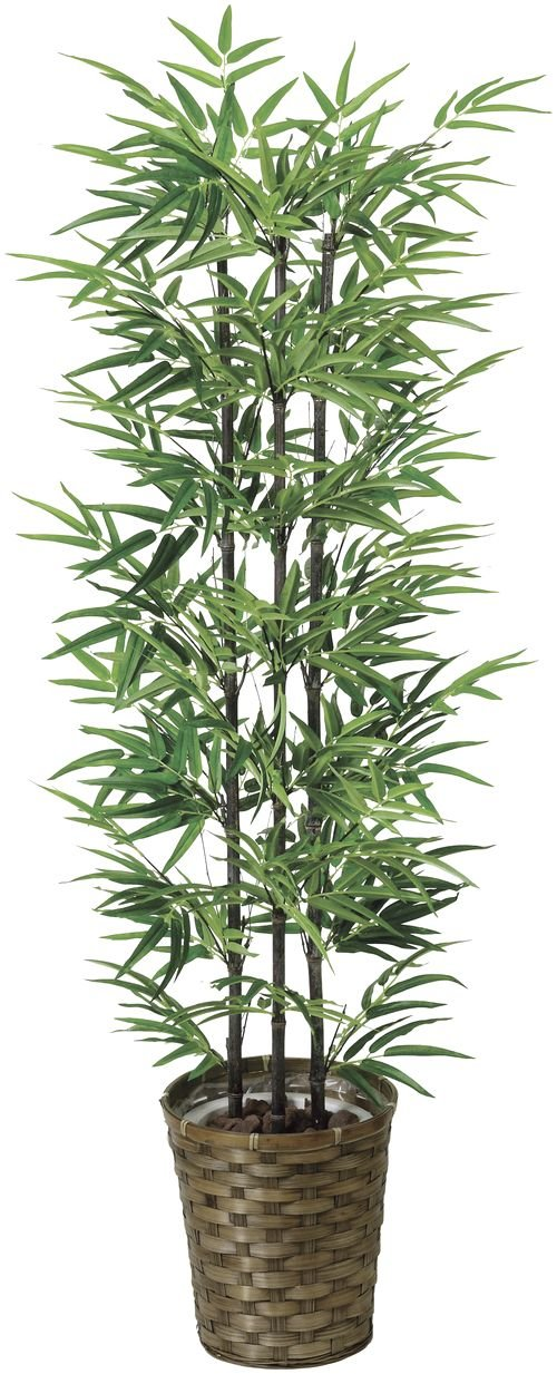 tree-j/ 造花 光触媒 観葉植物 黒竹 135cm B00RNXSO2I