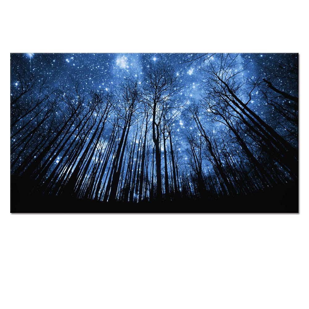 20x36 Starry Night Forest Canvas Wall Art Prints,Landscape..