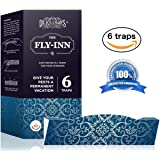 Dr. Killigan's The Fly Inn | Window Fly Traps | Sticky Fly Strip | Indoor Insect Trap | Catches and Hides Bugs | Better Than Fly Paper or Ribbon | Get Rid of Flies | (6, Blue Traps)