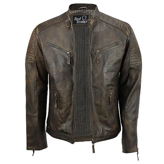 Aviatrix Veste en cuir véritable avec fermeture éclair pour homme Marron Style biker rétro vintage urbain