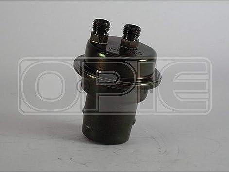 BOSCH Fuel Accumulator 0438170015