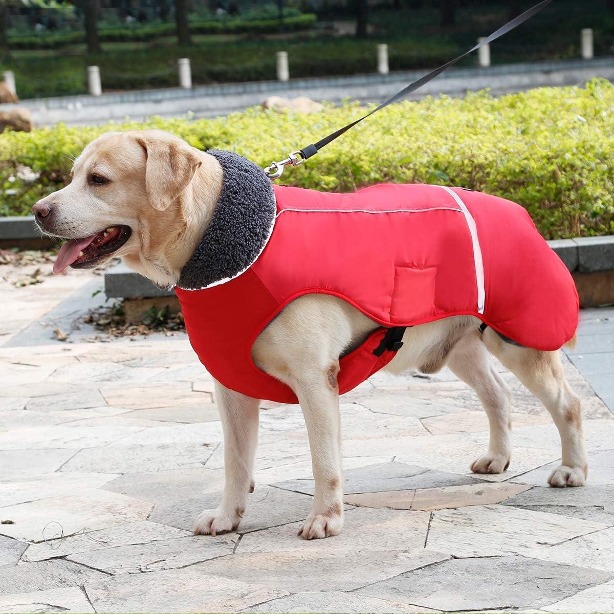 Wasserdicht Hundemantel Warm gepolstert Puffer Weste Welpen Regenmantel mit Fleece f/ür Hunde Gr/ö/ße S Bis 3XL TFENG Reflektierend Hundejacke