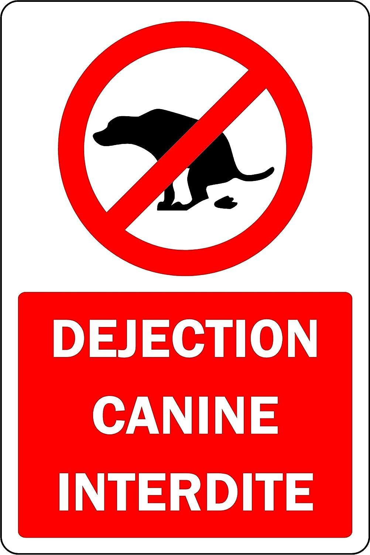 Panel de desjección de Perro Prohibido - 1,2 mm de plástico ...