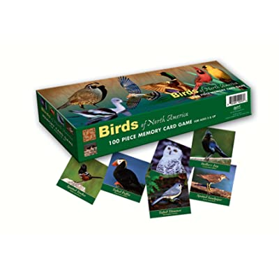 Memory Game Birds of North America : Toys & Games