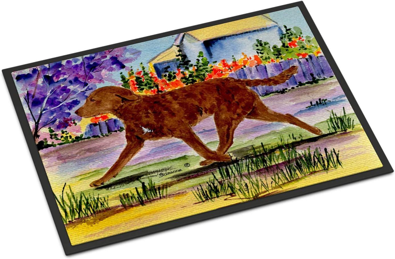 Caroline s Treasures SS8435MAT Chesapeake Bay Retriever Indoor Outdoor Mat 18×27 Doormat, 18H X 27W, Multicolor