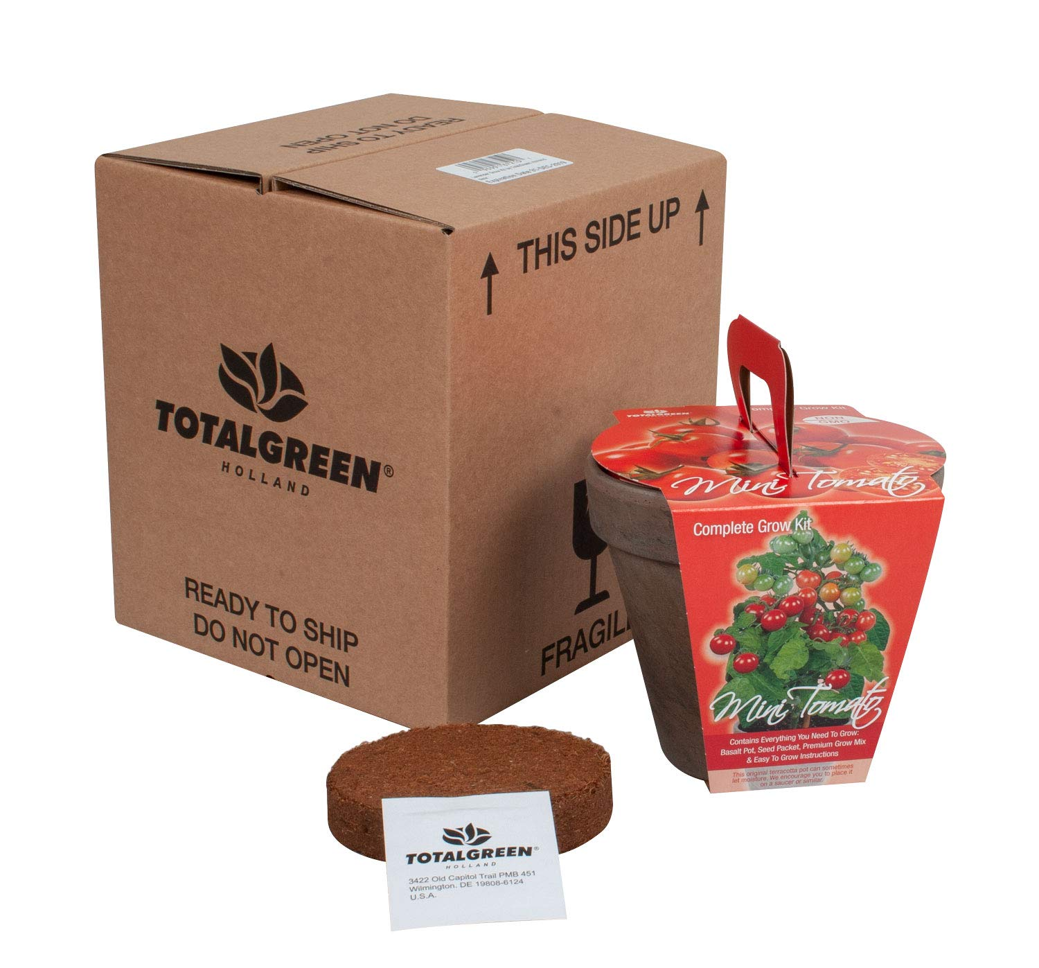 TotalGreen Holland Special Mini Tomato Grow Kit | Grow Fresh Mini Tomato Seeds Indoors | Great Gift Item | Grow Your Own Mini Tomato Plants in Unique Basalt Pot | Exclusive Kit by TotalGreen Holland by TotalGreen Holland (Image #6)