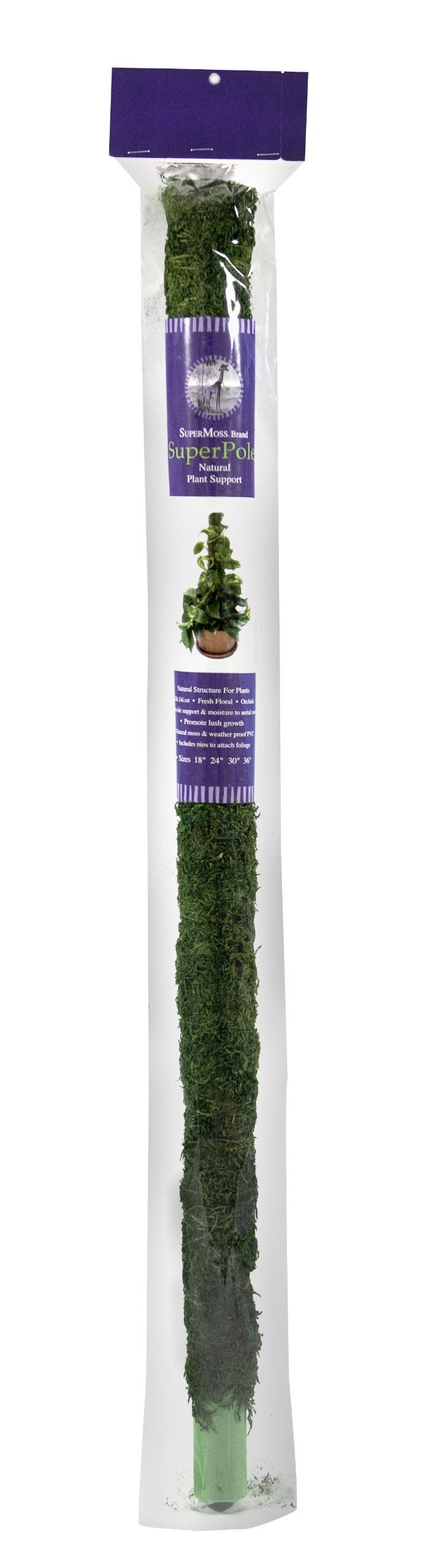 Supermoss Moss Poles Preserved 23ft