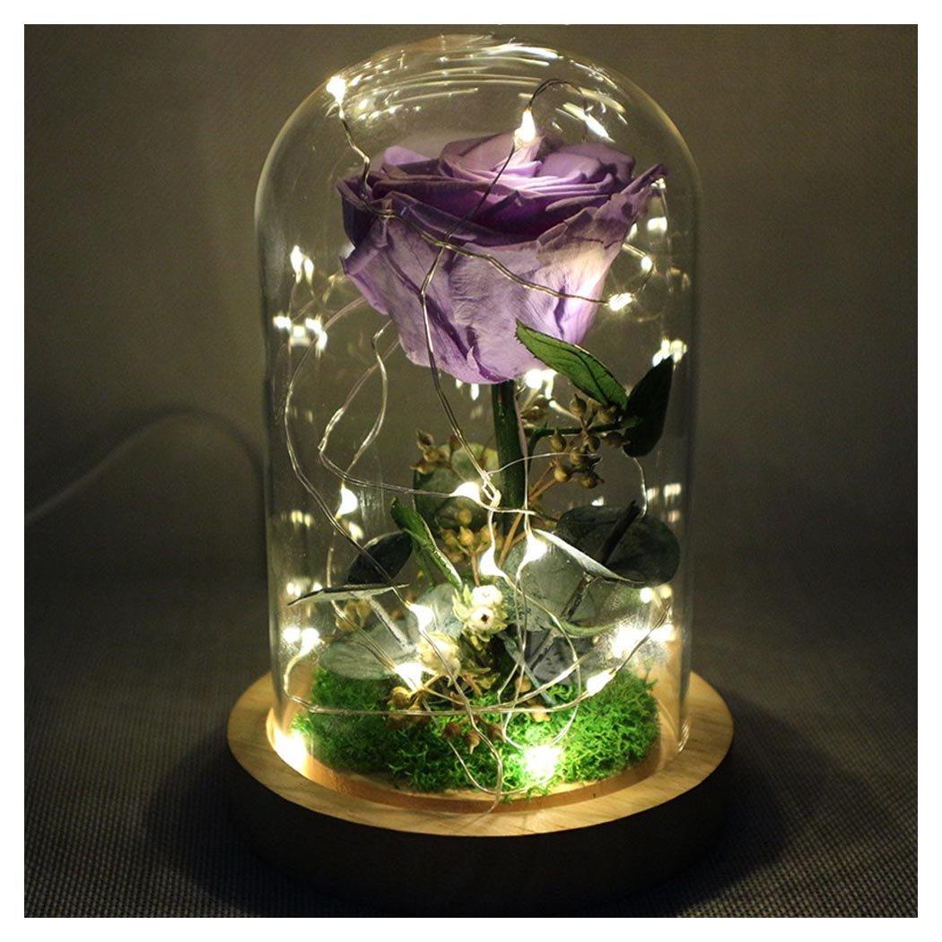 【在庫有】 Preserved Flower、Coxeer Eternalローズwith B0785RGDR6 USBケーブルLEDフェイク花バレンタインの日ウェディングギフト Preserved パープル B0785RGDR6, おもてなし考房:800586f3 --- newfinres.com
