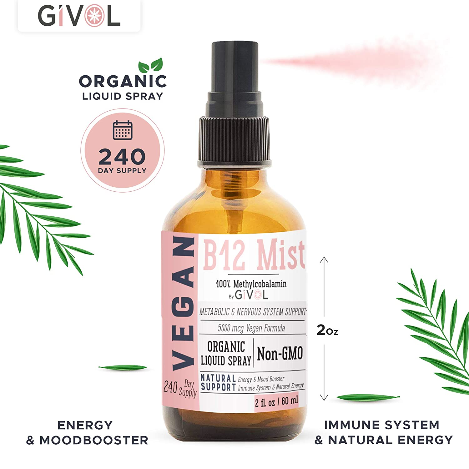 LOGIC REMEDY Vegan Methylcobalamin- Vitamin B12 Liquid Mist -240 x 5,000 mcg, Sugar Free - Non-GMO Vegan - Gluten Free - Paleo - Glass Bottle- Made & Bottled in The USA, 2 Fluid Ounces-240 Day Supply