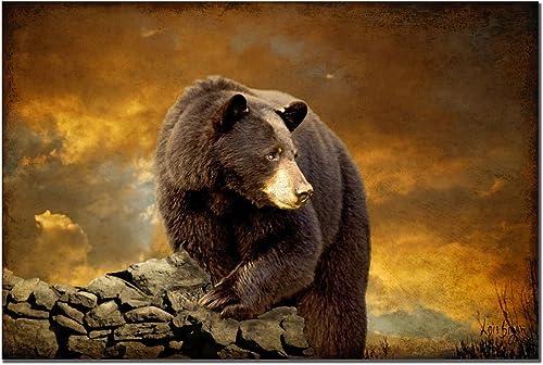 Trademark Fine Art The Bear Went Over the Mountain