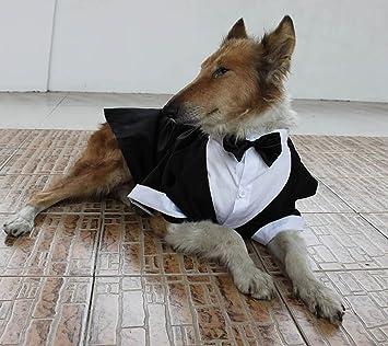 Amazon.com : Large Dog Wedding tuxedo with bowtie cotton dogs ...