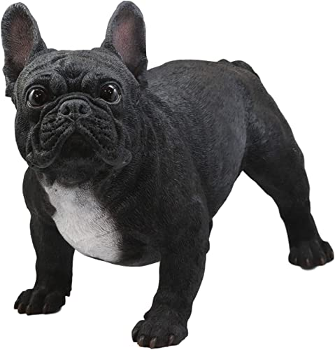 Ebros Adorable Large Lifelike Realistic Black French Bulldog Statue with Glass Eyes 19.5 Long Frenchie Figurine Pedigree Breed Animal Theme Dogs Puppy Puppies Sculpture