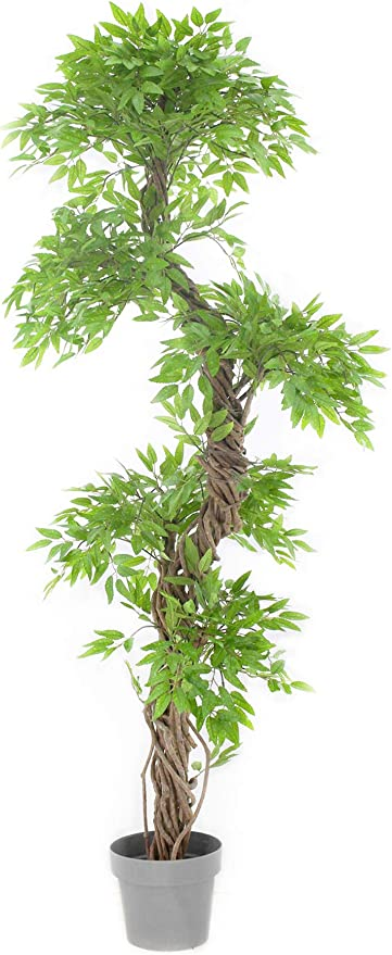 Amazon Com Vert Lifestyle Beautiful Artificial Plants And Trees