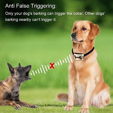 Collar Antiladridos perros pequeños [2017 Upgrade Version] Mothca recargable perro impermeable Barking control Collar de formación de sonido y vibración de ...