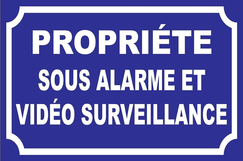 Panneau PROPRIETE sous Alarme Video Surveillance